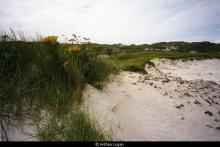 Valtos from the beach <a href='/image-details/87459'>(more info)</a>