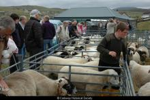 Carloway Show 2006 <a href='/image-details/89333'>(more info)</a>