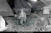Hector Macaulay, 31 Balallan at Seaweed Factory, Keose <a href='/image-details/85424'>(more info)</a>